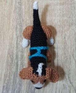 Beagle 5